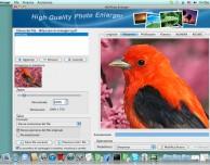 HQ Photo Enlarger: ingrandimenti foto semplici, veloci e nitide