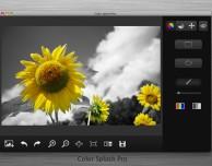 Color Splash Pro: applicazione grafica per risaltare i colori