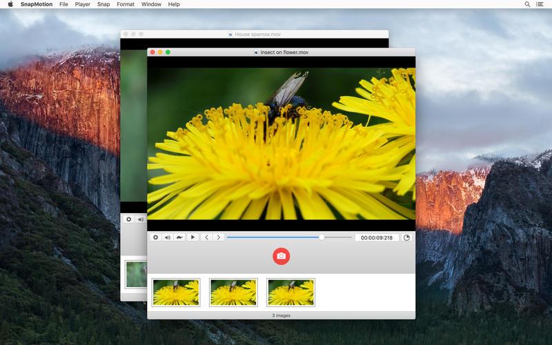 Snapmotion 3 Estrarre Screenshot Di Alta Qualità Da Un