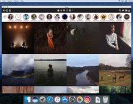 Gestire profili multipli Instagram su Mac con Grids: disponibile l'aggiornamento 4.0