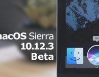 Disponibile la beta 2 di macOS 10.12.3