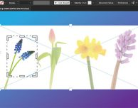 Adobe aggiorna Illustrator CC e InDesign CC