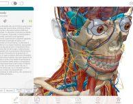 Atlante di anatomia umana edizione 2017 disponibile su Mac App Store