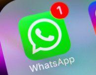 L'app di WhatsApp in arrivo (davvero) anche su macOS