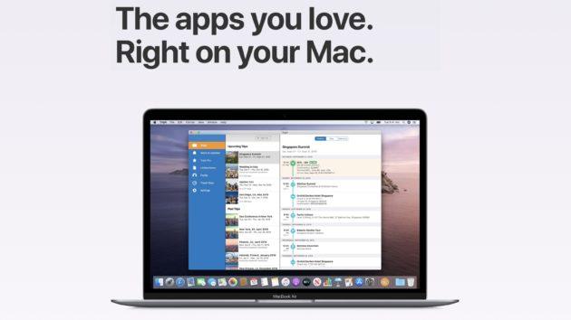 supporto catalyst apple